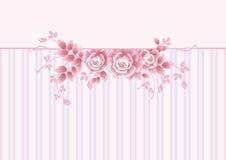 Tarjeta de felicitación con las rosas rosadas Fotos de archivo libres de regalías