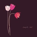Tarjeta de felicitación con los tulipanes Imagen de archivo