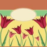 Tarjeta de felicitación con los tulipanes rojos Fotos de archivo libres de regalías