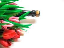 Tarjeta de felicitación con los tulipanes y el champán Imagen de archivo libre de regalías