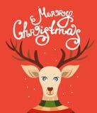 Tarjeta de felicitación de la Navidad con el reno Fotografía de archivo libre de regalías