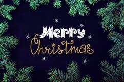 Tarjeta de felicitación de la Navidad y del Año Nuevo con el marco de los brunches del árbol y el Dr. spruce de la mano Foto de archivo