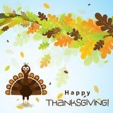 Tarjeta de felicitación de la plantilla con un pavo feliz de la acción de gracias, vector Foto de archivo libre de regalías