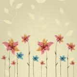 Tarjeta de felicitación de la primavera o de la flor del verano Foto de archivo libre de regalías