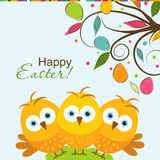 Tarjeta de felicitación de Pascua de la plantilla, polluelo, vector Fotos de archivo