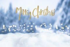 Tarjeta de felicitación del bokeh de la Navidad con palabras del saludo de la Feliz Navidad Imágenes de archivo libres de regalías