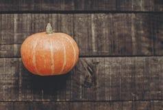 tarjeta de felicitación del concepto de Halloween o de la acción de gracias pumpk hermoso Foto de archivo libre de regalías