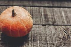 tarjeta de felicitación del concepto de Halloween o de la acción de gracias pumpk hermoso Imagenes de archivo