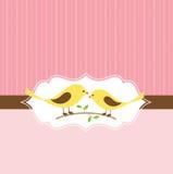 Tarjeta de felicitación del Lovebird Foto de archivo