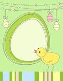 Tarjeta de felicitación del pollo de Pascua Fotos de archivo libres de regalías