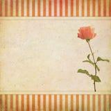Tarjeta de felicitación del vintage Fotos de archivo