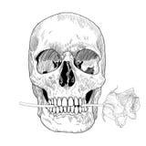 Tarjeta de felicitación del vintage con el cráneo dibujado mano y libre illustration