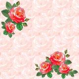 Tarjeta de felicitación del vintage con las rosas Imagen de archivo