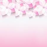 Tarjeta de felicitación elegante con la flor rosada de 3d Sakura Foto de archivo libre de regalías