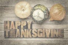 Tarjeta de felicitación feliz de la acción de gracias Imagenes de archivo