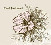 Tarjeta de felicitación floral Imagen de archivo libre de regalías