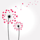 Tarjeta de felicitación floral Imágenes de archivo libres de regalías
