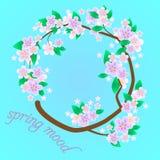 Tarjeta de felicitación floral colorida Fotografía de archivo libre de regalías