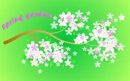 Tarjeta de felicitación floral colorida Foto de archivo