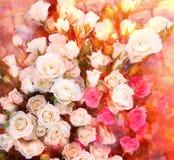 Tarjeta de felicitación floral con el ramo de rosas blancas y rosadas soleadas Fotos de archivo