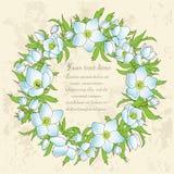 Tarjeta de felicitación floral con las anémonas Imagenes de archivo
