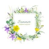 Tarjeta de felicitación floral del verano Foto de archivo libre de regalías