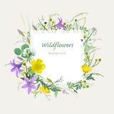 Tarjeta de felicitación floral del verano Imagen de archivo libre de regalías