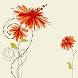 Tarjeta de felicitación floral linda stock de ilustración