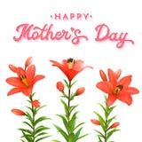 Tarjeta de felicitación floral para el día de madres Lirios rojos Fotos de archivo libres de regalías