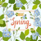 Tarjeta de felicitación hermosa con un marco de las flores y de las letras azules de la primavera Imagen de archivo