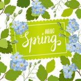 Tarjeta de felicitación hermosa con un marco de las flores y de las letras azules de la primavera Imagen de archivo libre de regalías