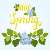Tarjeta de felicitación hermosa de la primavera con flores y letras azules hermosas en un fondo azul Imagenes de archivo
