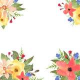 Tarjeta de felicitación, invitación, bandera Capítulo para su texto con Flor Fotografía de archivo libre de regalías