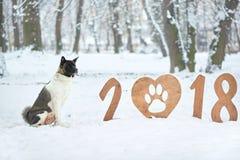 Tarjeta 2018 de felicitación de la Feliz Año Nuevo Fotografía de archivo