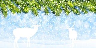 Tarjeta de felicitación de la Navidad con vector de los ciervos Foto de archivo libre de regalías