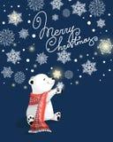 Tarjeta de felicitación de la Navidad hermosa y del Año Nuevo Imagen de archivo libre de regalías