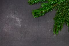 Tarjeta de felicitación de la Navidad y del Año Nuevo con los brunches spruce f del árbol Fotografía de archivo libre de regalías