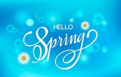 Tarjeta de felicitación de las letras Letras manuscritas Hola primavera en un fondo brillante del cielo azul con el prado del efe libre illustration