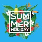 Tarjeta de felicitación de las vacaciones de verano adornada con la planta y el animal tropicales Imágenes de archivo libres de regalías