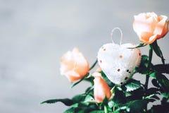 Tarjeta de felicitación moderna mínima de día de San Valentín, bandera, maqueta con el espacio de la copia Rosas coralinas con la imagen de archivo libre de regalías