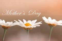 Tarjeta de felicitación para el día del ` s de la madre Fotografía de archivo
