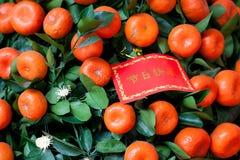 Tarjeta de felicitación roja china del Año Nuevo en el tr Imagen de archivo libre de regalías
