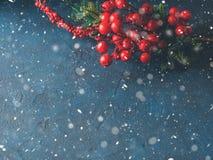 Tarjeta de felicitación roja de la caída de la nieve de la rama de la Navidad imagen de archivo