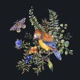 Tarjeta de felicitaci?n floral del bosque del vintage de la acuarela con el p?jaro, bayas, polilla, helecho, flores rosadas libre illustration