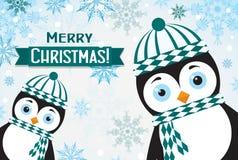 Tarjeta de felicitación de la Navidad de la plantilla con un pingüino, vector Imagenes de archivo