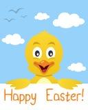 Tarjeta de felicitación del polluelo de Pascua Imagenes de archivo