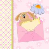 Tarjeta de felicitaciones del bebé con el conejo y la manzanilla Foto de archivo