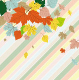 Tarjeta de felicitaciones inconsútil con las hojas de otoño Imagen de archivo libre de regalías
