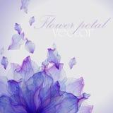Tarjeta de la acuarela con el pétalo púrpura de la flor Foto de archivo libre de regalías