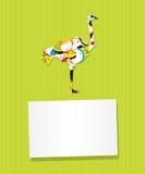Tarjeta de la avestruz Imagen de archivo